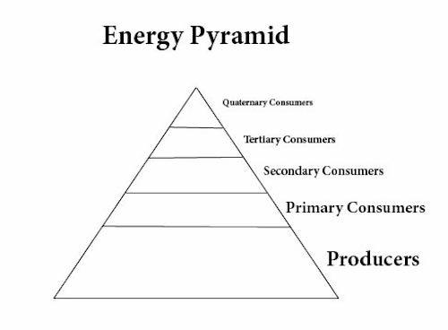 energypyramid