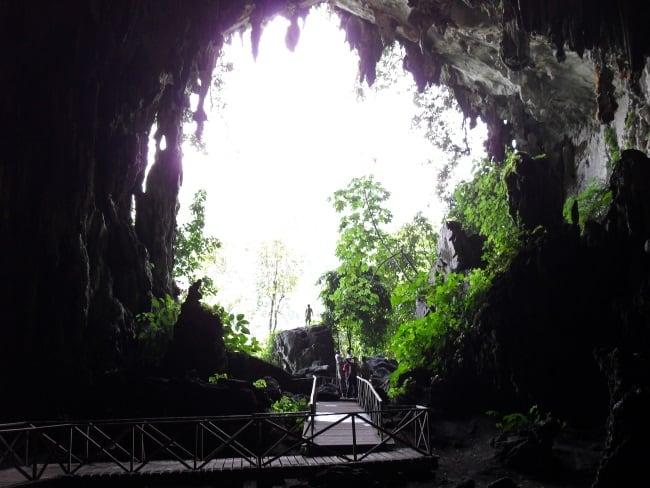 La Cueva de las Lechuzas in Tingo Maria National Park