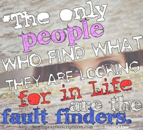 The only people who find what they are looking for in life are the fault finders