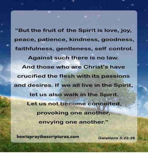 fruit of the spirit bible verse