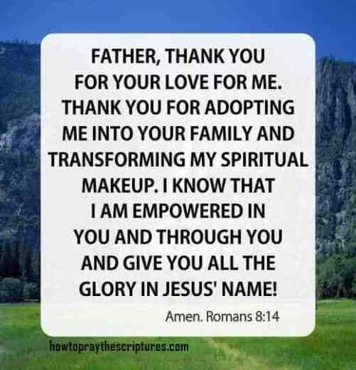 How To Pray Romans 8: 14