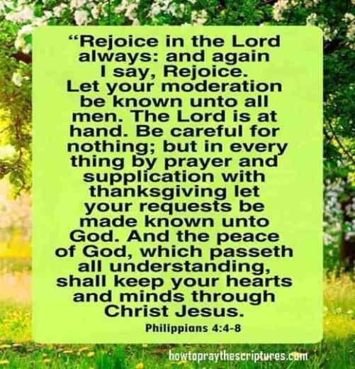 Bible Verses on Strength