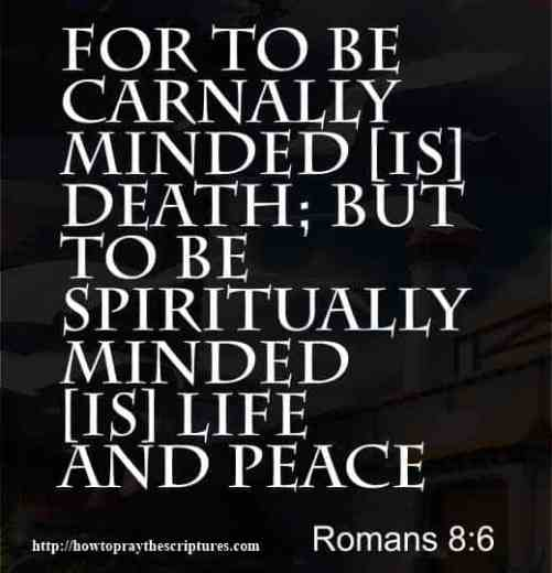 12 Scriptures On Peace
