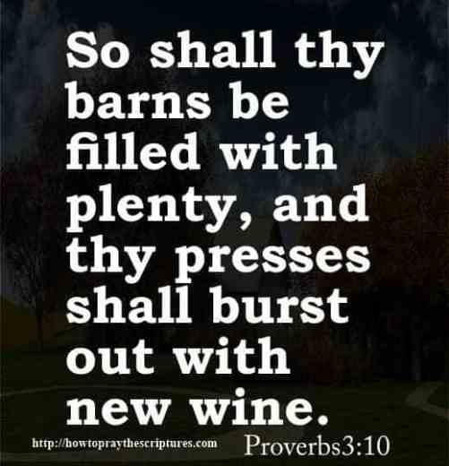 12 Bible Verses For Graduates
