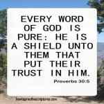 Every Word Of God Is Pure
