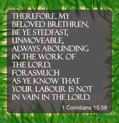 Therefore my beloved brethren be ye stedfast unmoveable
