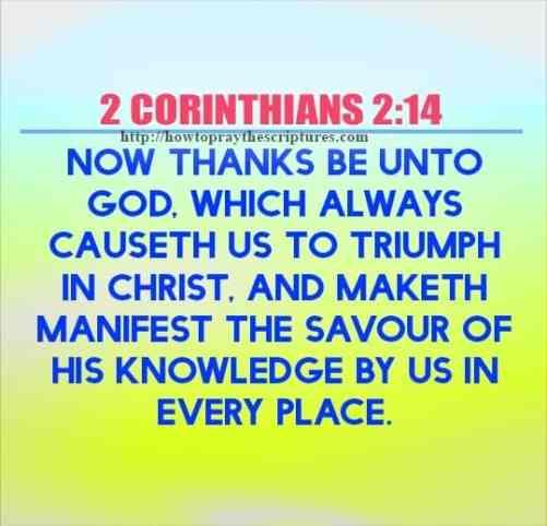 Top Ten Bible Verses About Hope
