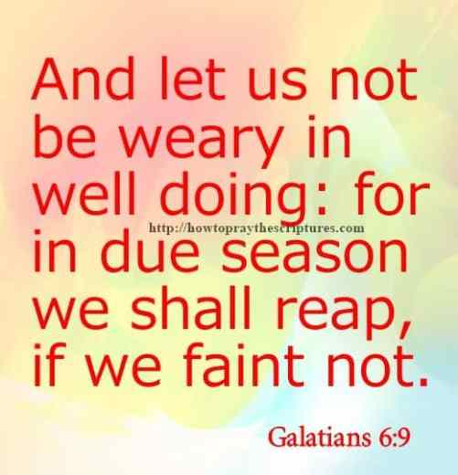 And Let Us Not Be Weary Galatians 6-9