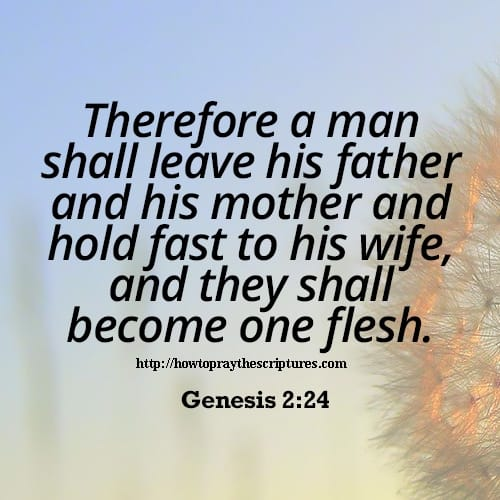 bible verses about marriage - photo #2