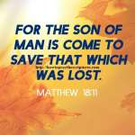 For The Son Of Man Is Come To Save Matthew 18-11