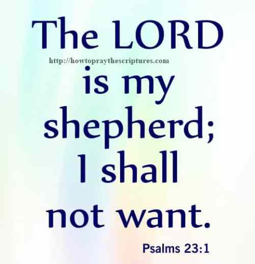 The LORD Is My Shepherd Psalms 23-1