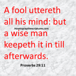A Fool Uttereth All His Mind Proverbs 29-11