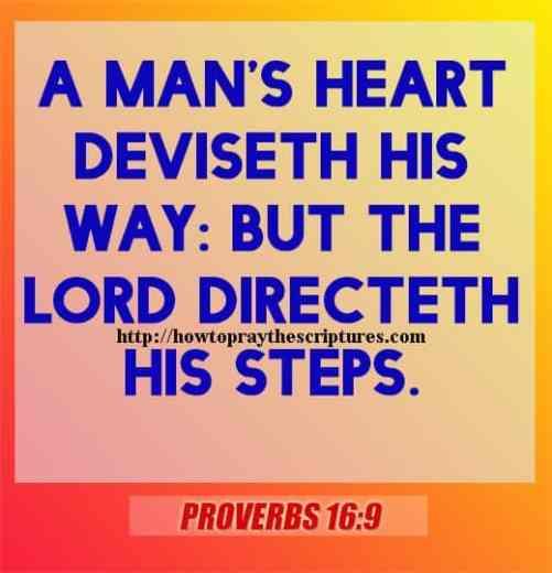A Mans Heart Deviseth His Way Proverbs 16-9