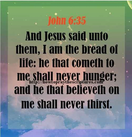 And Jesus Said Unto Them I Am The Bread Of Life