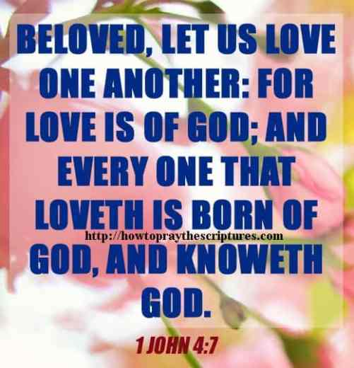 Beloved Let Us Love One another 1 John 4-7