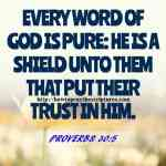 Every Word Of God Is Pure Proverbs 30-5