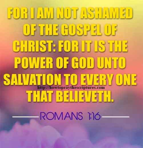For I Am Not Ashamed Of The Gospel Romans 1-16