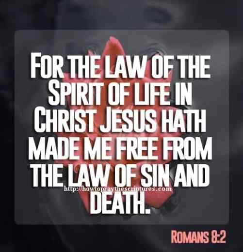 For The Law Of The Spirit Of Life In Christ Jesus Romans 8-2