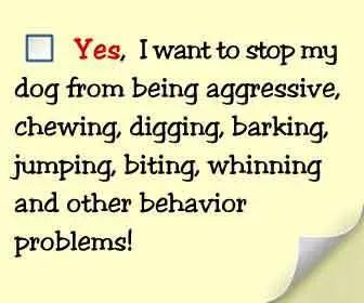 Secrets to dog training solution