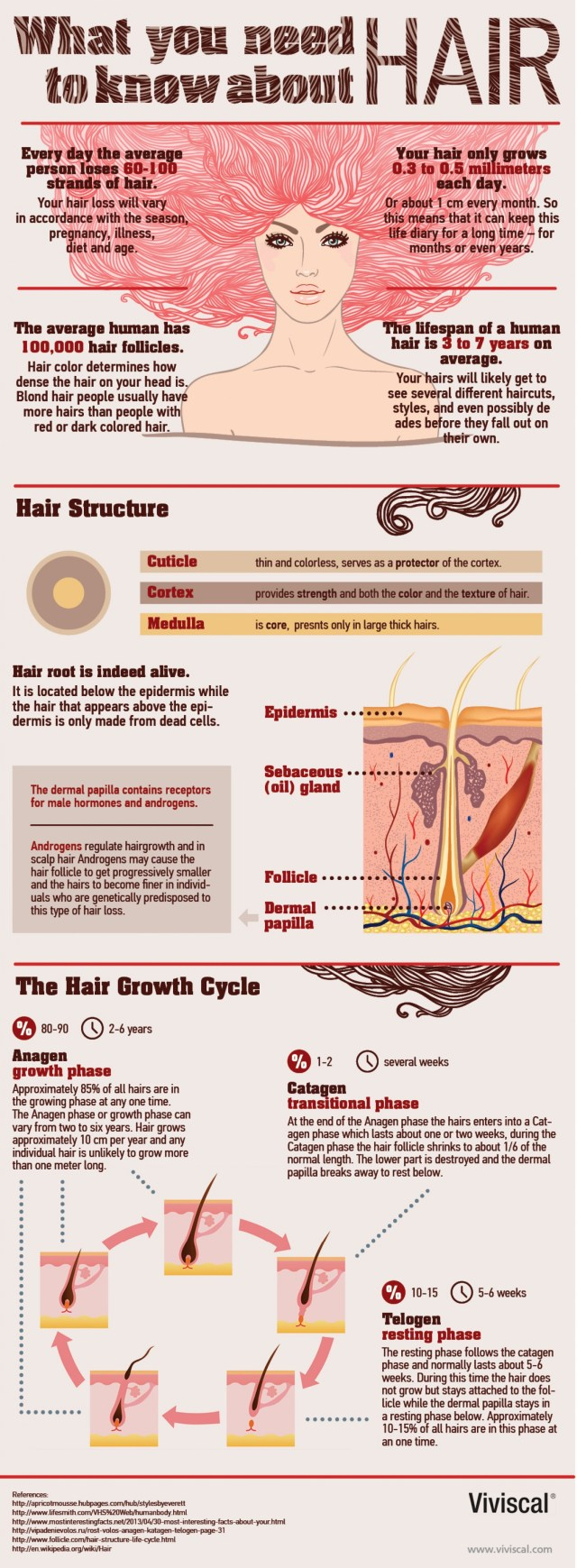 what-you-need-to-know-about-hair_52bc5e9dcf35d_w1500-1