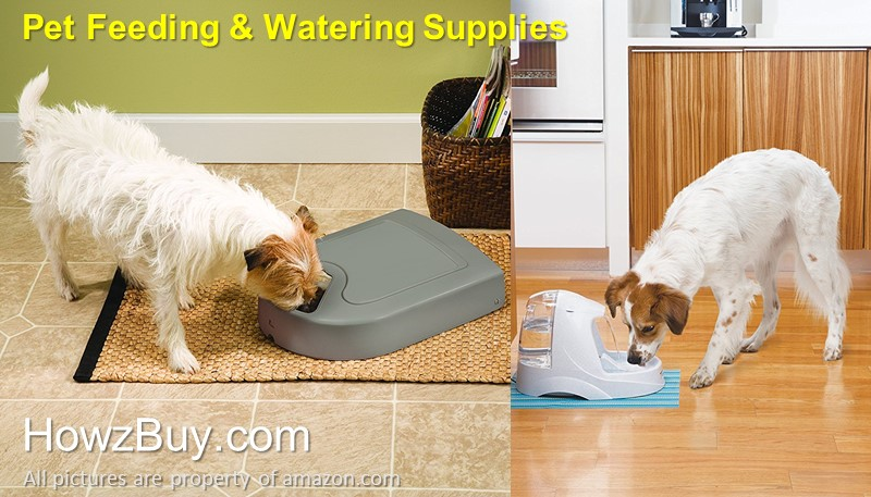Pet feeding and watering station