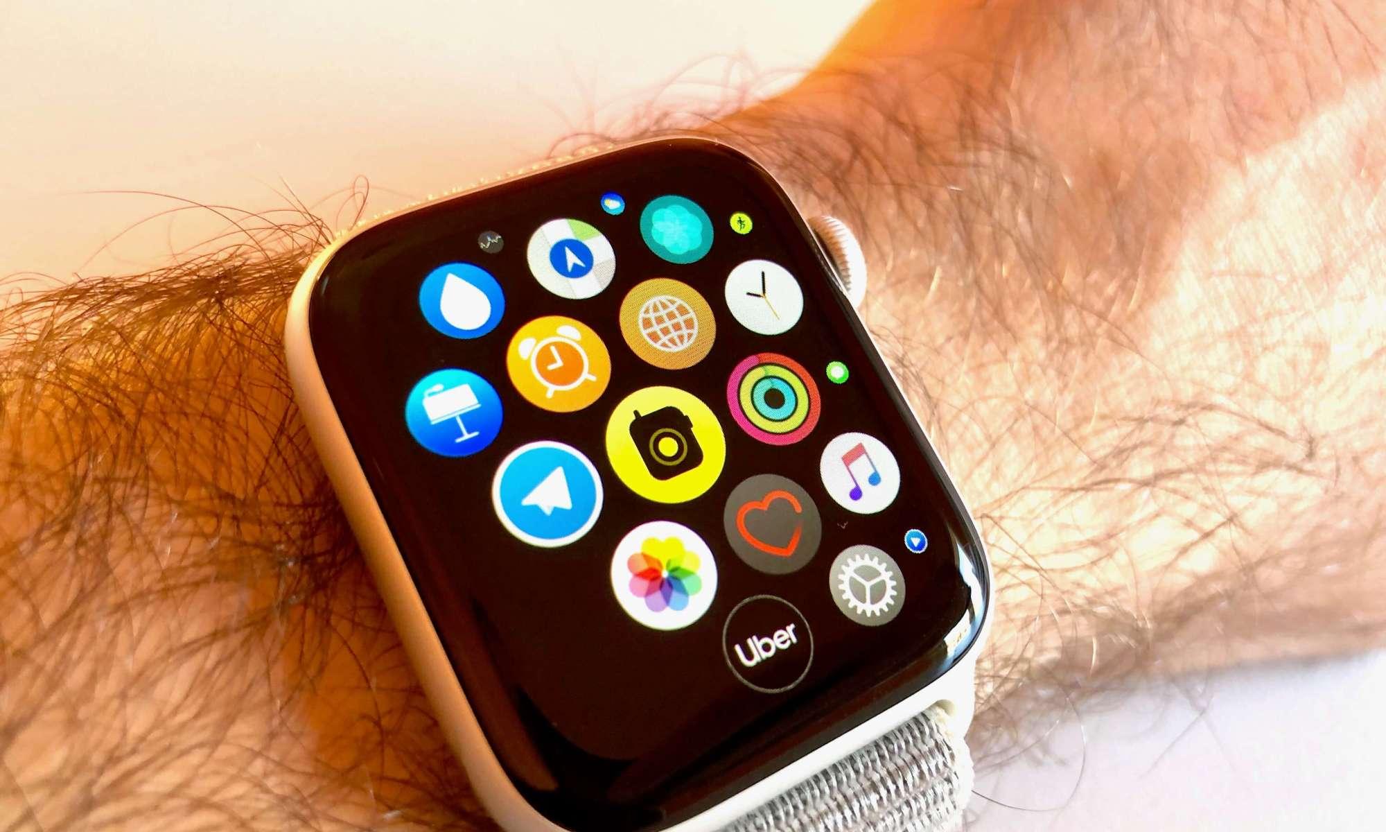 Apple Watch Walkie