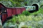 Tren de la Libertad-Ibarra-Salinas