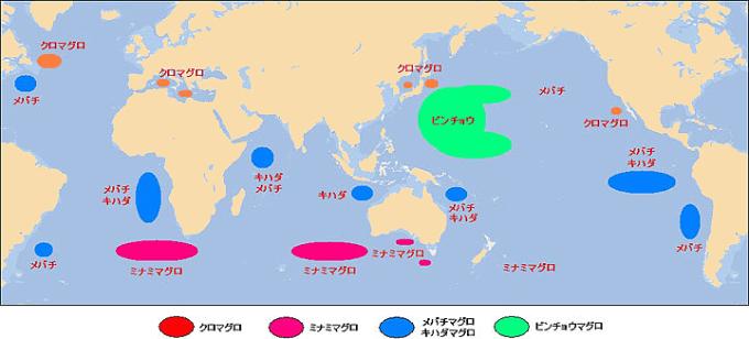 マグロの種類と漁場マップ