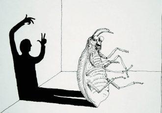 Metamorfosis de Kafka