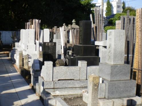 智光院【日当たりの良い墓地】