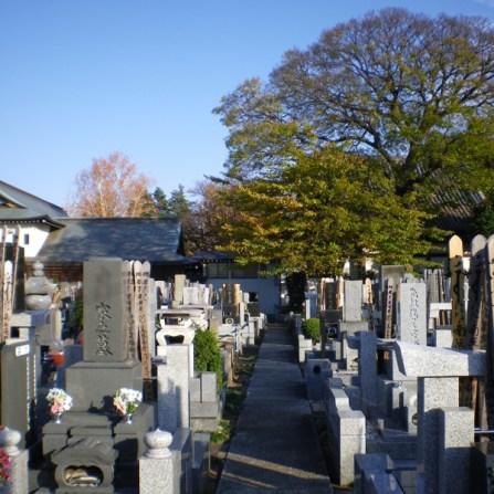 観蔵院【御影石張りの通路の墓地】