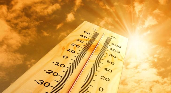 ola calor 3