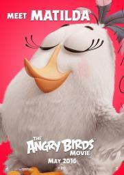 Angry_Birds_la_pel_cula-417293624-large
