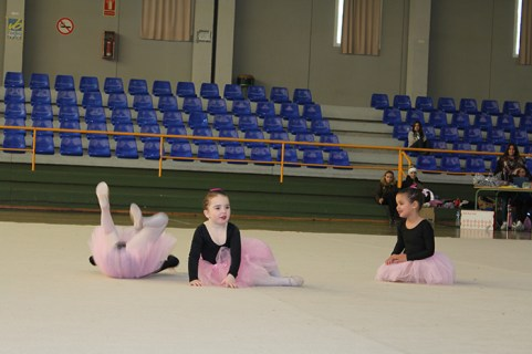 gimnasia (12)