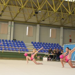 gimnasia (26)