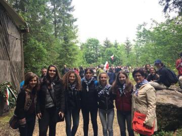 Mauthausen 11