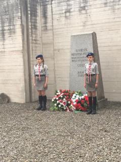 Mauthausen 14