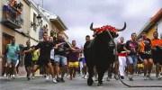 El Torico de la Cuerda, declarado Fiesta de Interés Turístico Autonómico