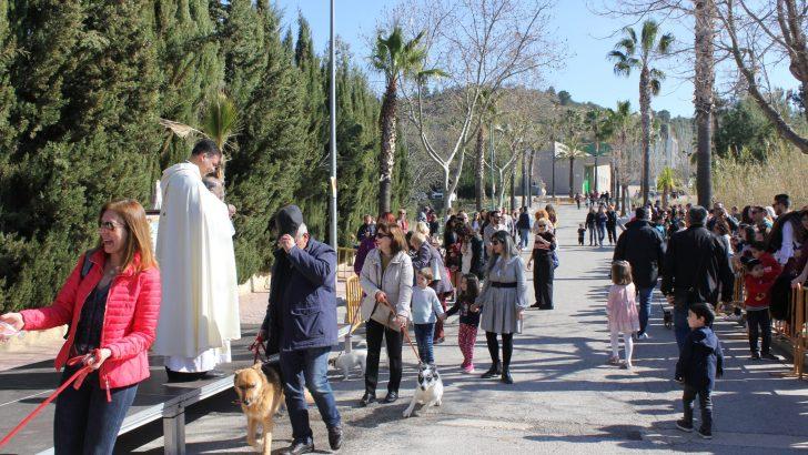 Las imágenes de la festividad de «San Antón» en Buñol