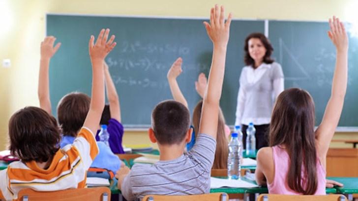 El profesorado es imprescindible