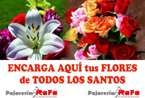 santos flores.indd