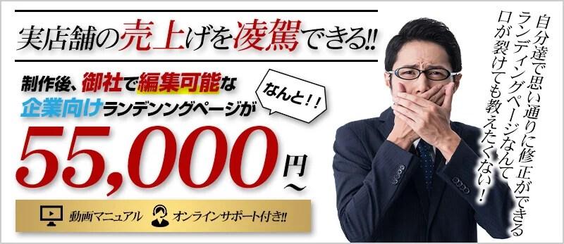 編集可能なランディングページが55,000円から!