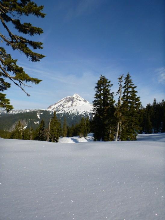 Mount Garibaldi!