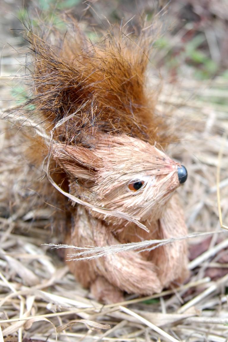 lizzie's way squirrel