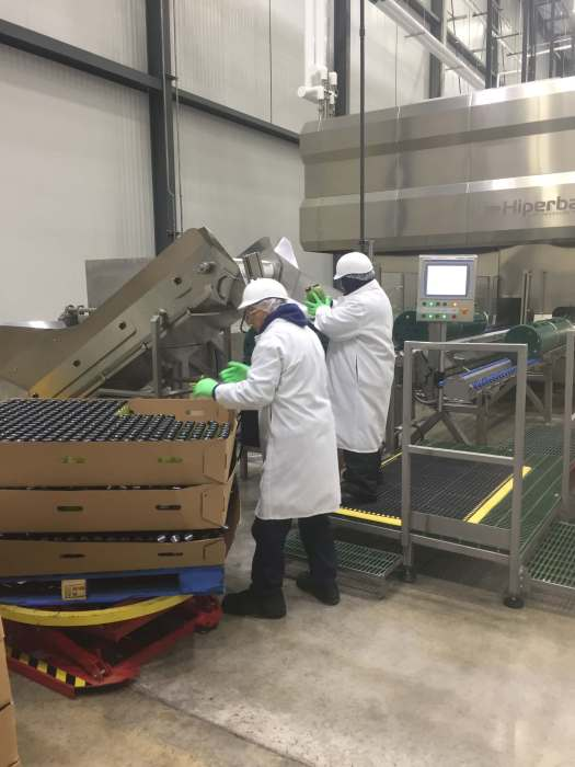 Two workers are loading HPP baskets/tubes from a pallet of juice bottles