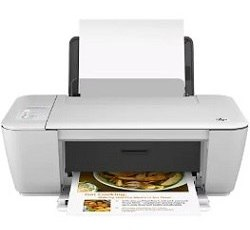 HP Deskjet 1513 Printer