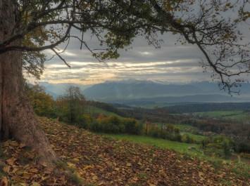 Tolle Aussicht am Faltigberg (Zürcher Höhenklinik)
