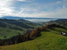 Zürichsee im smog