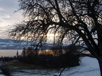 Frohberg Stäfa