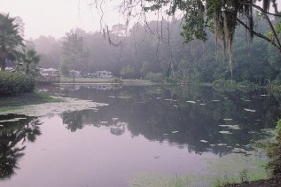 Florida 2000 40